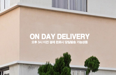 on day delivery